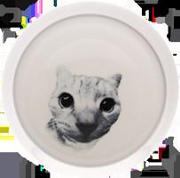 Echo Cat Bowl