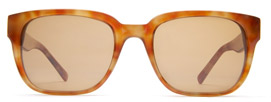 Warby Parker Spencer Sunglasses