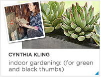 Cynthia Kling - Indoor Gardening: (for green and black thumbs).