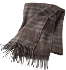 Schoolhouse Llama Throw Blanket