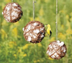 Grapevine Globes