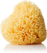 Spirit Beauty Lounge Natural Sponge