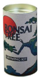 Bonsai Tree Growing Kit