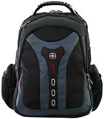 Pegasus SwissGear Backpack